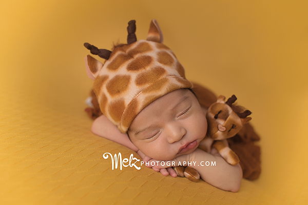 sebastians-v-newborn-session-belleville-new-jersey-newborn-photographer-melz-photography-2.png